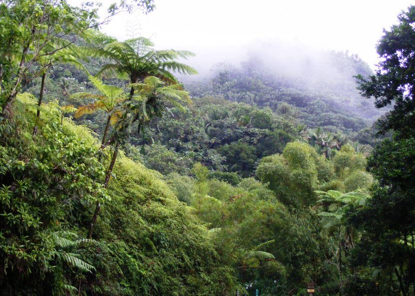 Le Parc national lance l'appel à projets « Laliwondaj »