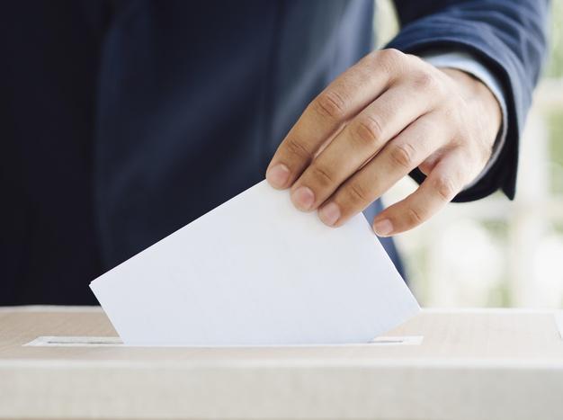 Josette Borel Lincertin et Max Mathiasin, candidats aux élections régionales