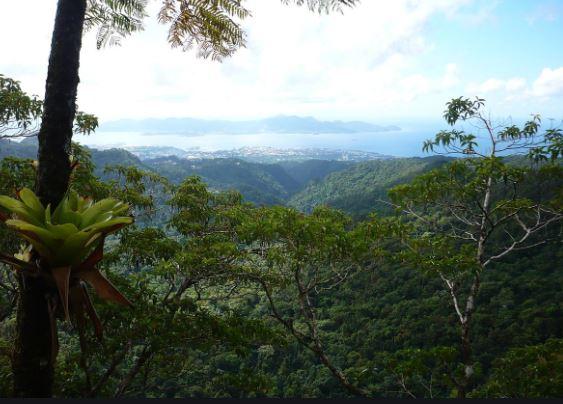 Météo : les sorties en montagne fortement déconseillées