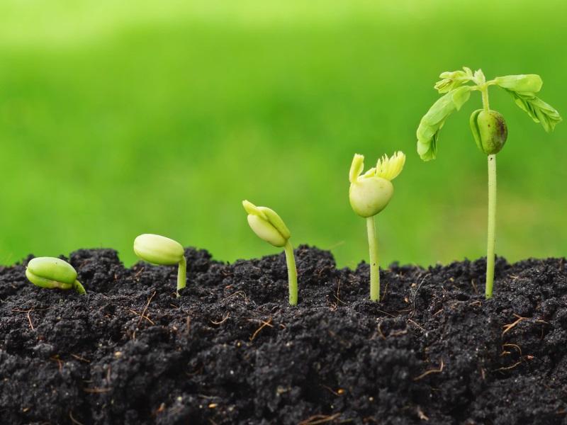 Agriculture durable : les professionnels du secteur sensibilisés à la démarche