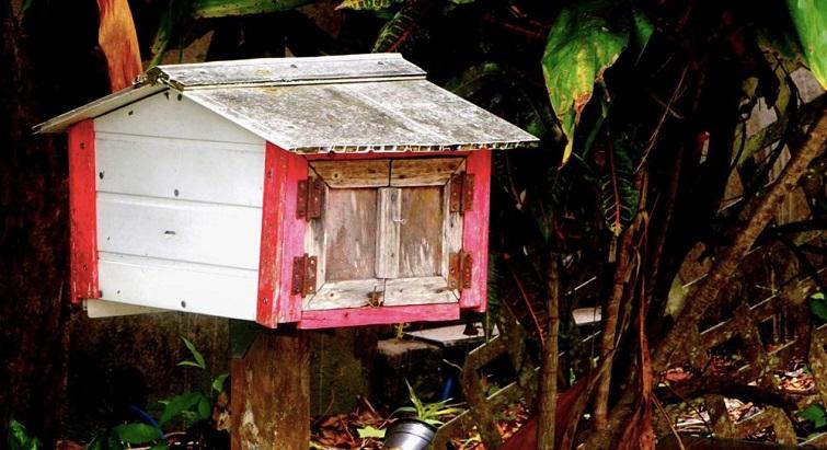 Un livre rend hommage en images et poésies aux boîtes aux lettres de Guadeloupe