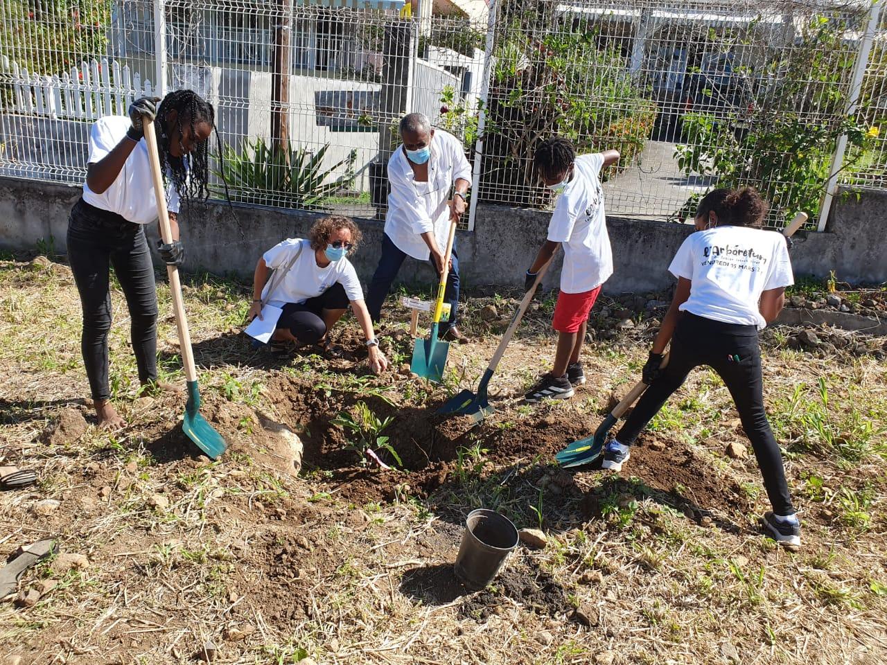 Une centaine d'arbres plantés au Collège Joseph Pitat