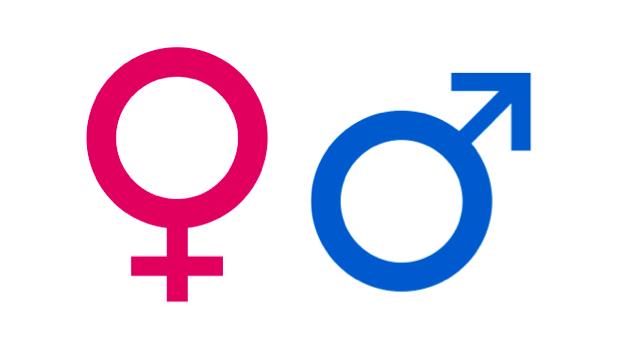 Salaires : les inégalités entre hommes et femmes persistent en Guadeloupe