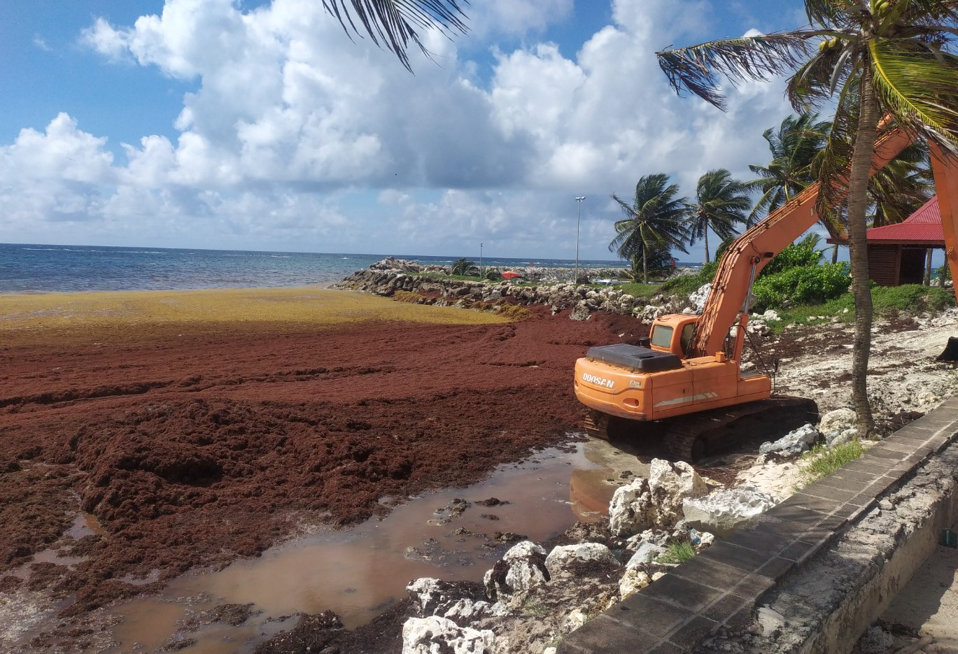 Le syndicat de valorisation des plages et des sites touristiques à Marie-Galante