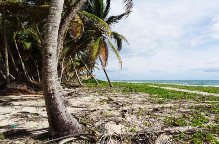 300 kilos de déchets ramassés sur la plage de petit Macabou au Vauclin