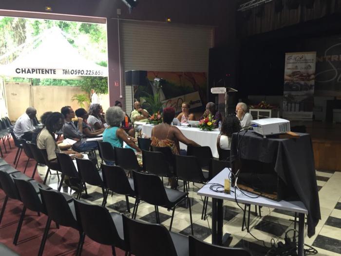 4 ateliers pour faire évoluer le carnaval en Guadeloupe