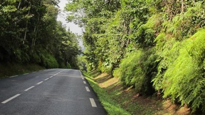 Accident sur la route des Mamelles