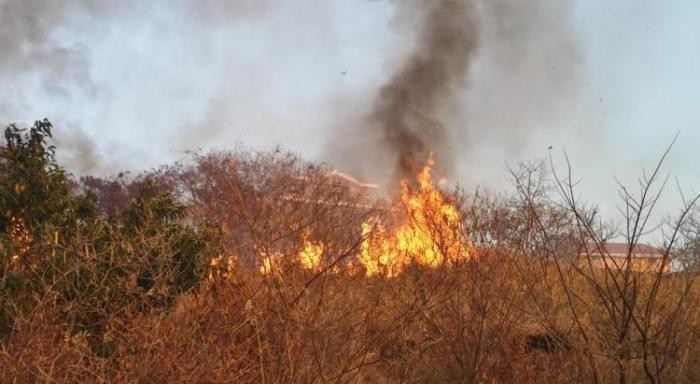 Alerte sécheresse : interdiction de brûlage des végétaux