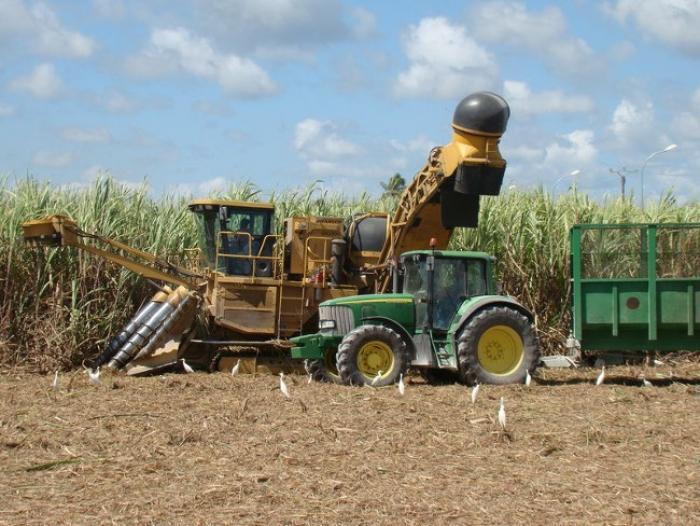 Chantiers d'insertion agricole : quarante jeunes bénéficieront d'une formation professionnelle