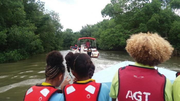 Des élèves du Lamentin à la découverte de leur mangrove