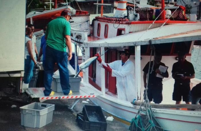 Les autorités controlent de près les importateurs de poissons
