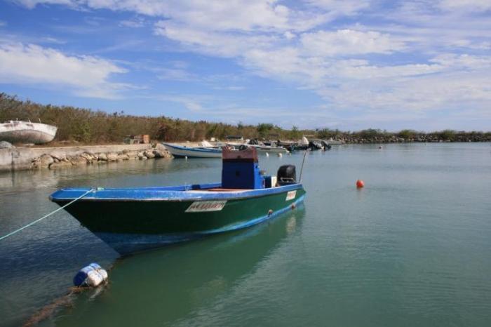 Les marins-pêcheurs rejettent le plan chlordécone 3