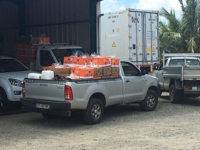Matthew : les planteurs de bananes attendent les fruits de la visite ministérielle