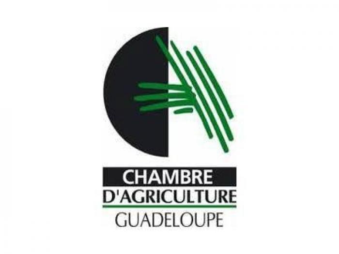 Onze démissionnaires à la Chambre d'agriculture