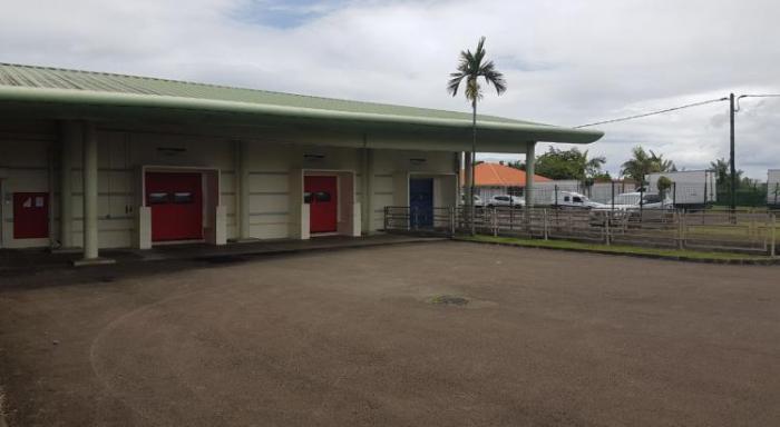 Que va devenir l'abattoir de Martinique ?