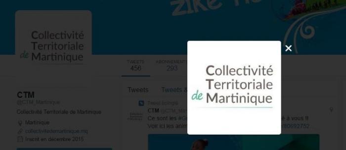 Quel logo pour la Collectivité Territoriale de Martinique ?