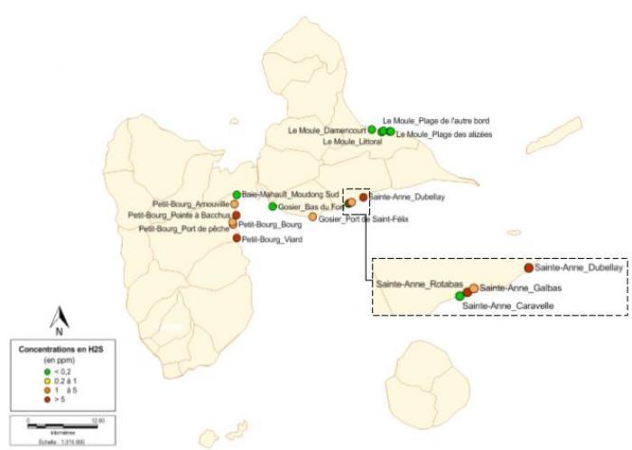 Sargasses : fortes concentrations de H2S sur Petit-Bourg et Sainte-Anne