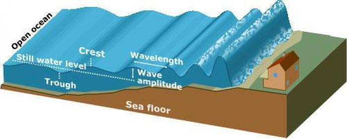 Un exercice d'évacuation pour se préparer au risque de tsunami