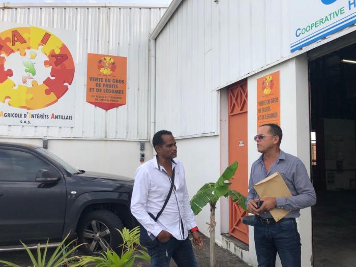 Une centaine d'agriculteurs créent Maïa, une plateforme commerciale coopérative
