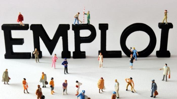 Une diminution du nombre de demandeurs d'emploi