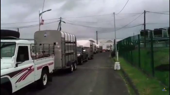 [Vidéo] Forte affluence pour la réouverture de l'abattoir